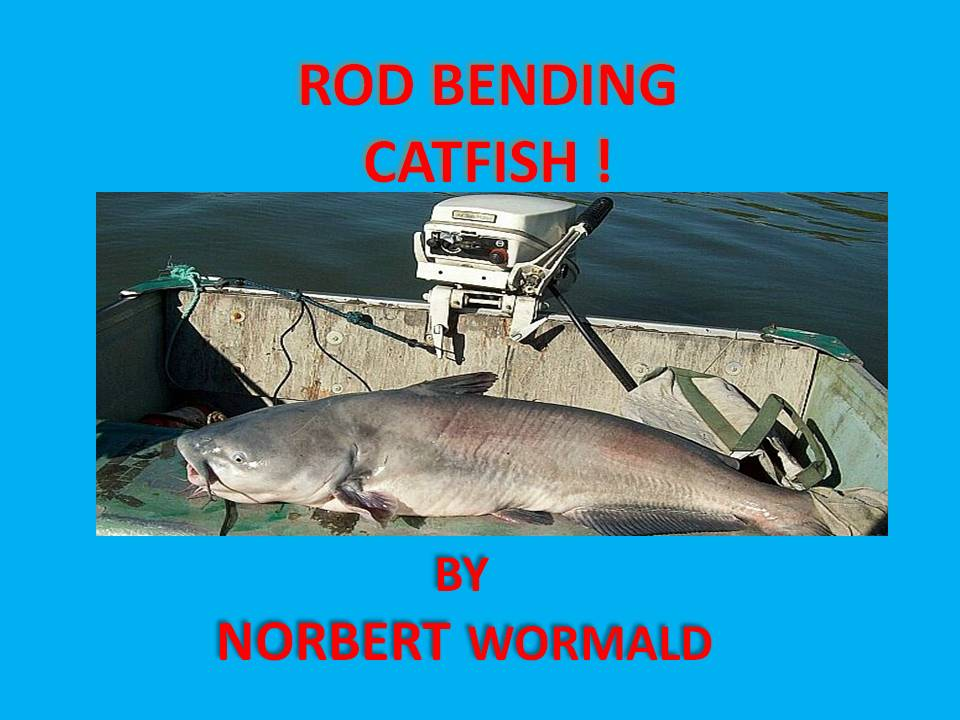COVER OF MY E-BOOK AT AMAZON  ROD BENDING CATFISH